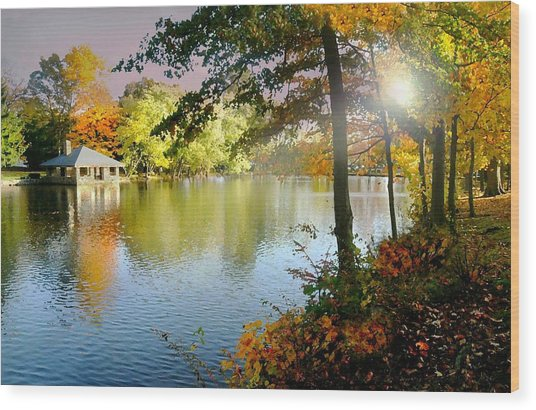 Autumn At Tilley Pond Wood Print