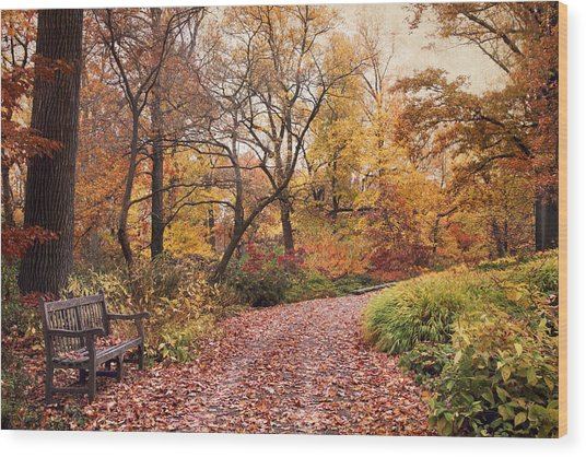 Autumn Azalea Garden Wood Print