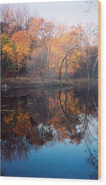 Autumn Banks Of The Brandywine Wood Print