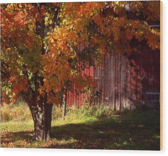 Autumn Barn Wood Print by Barry Shaffer