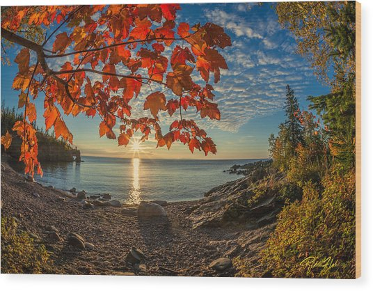 Autumn Bay Near Shovel Point Wood Print