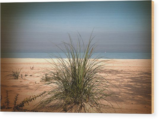 Autumn Beach Wood Print