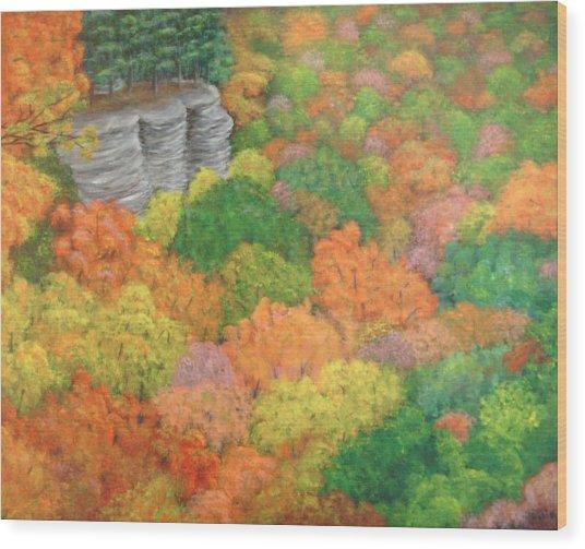 Autumn Beauty Wood Print by Hollie Leffel