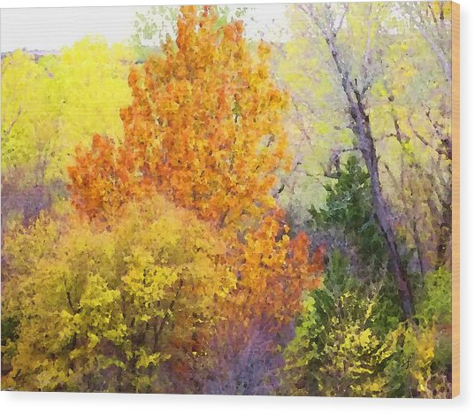 Wood Print featuring the digital art Autumn Blaze  by Shelli Fitzpatrick