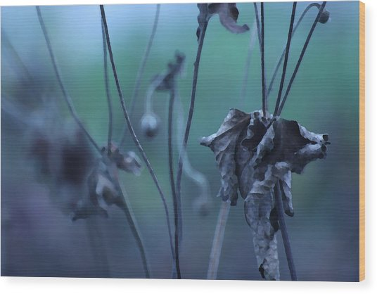 Autumn Blues Wood Print