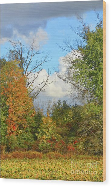 Autumn Breeze Nature Art Wood Print