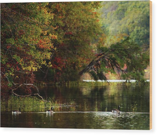Autumn By The Lake Wood Print by Scott Fracasso