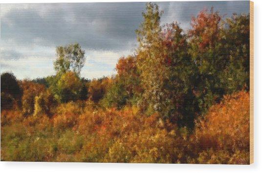 Autumn Calico Along The Arroyo El Valle New Mexico Wood Print by Anastasia Savage Ealy