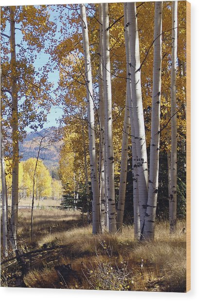 Autumn Chama New Mexico Wood Print