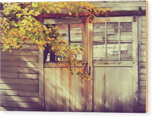 Autumn Color Wood Print by JAMART Photography