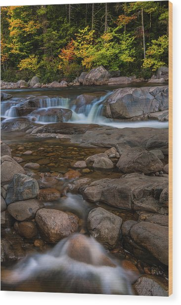 Autumn Colors In White Mountains New Hampshire Wood Print