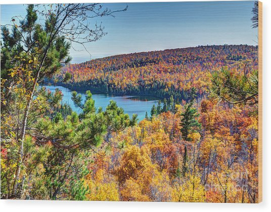 Autumn Colors Overlooking Lax Lake Tettegouche State Park II Wood Print