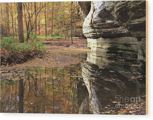 Autumn Comes To Illinois Canyon  Wood Print