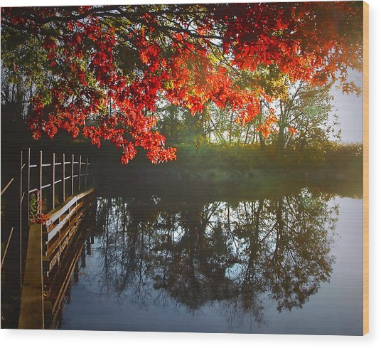 Autumn Creek Magic Wood Print