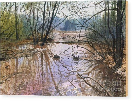 Autumn Creek Wood Print