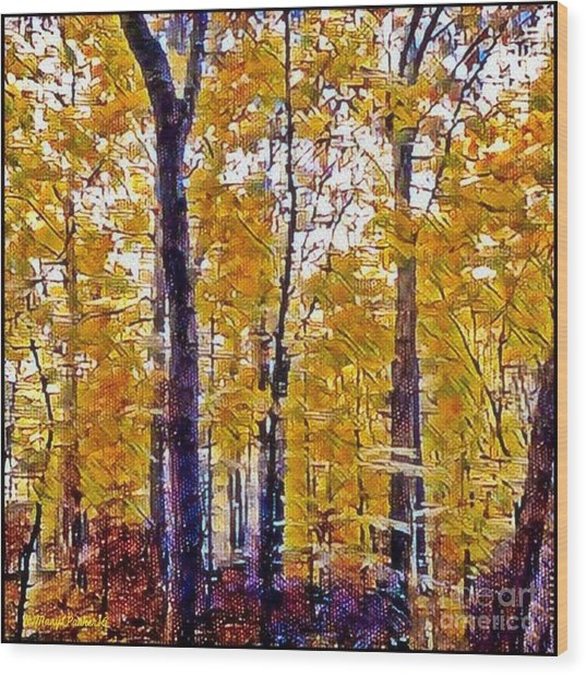 Autumn  Day In The Woods Wood Print
