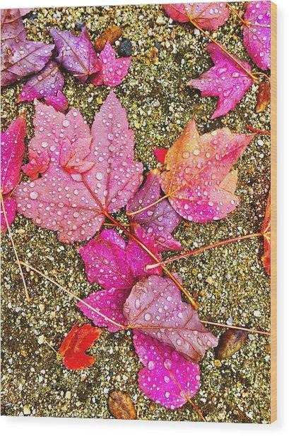 Autumn Dew Wood Print