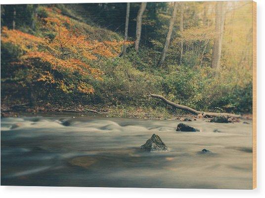 Autumn Dreamscape Wood Print