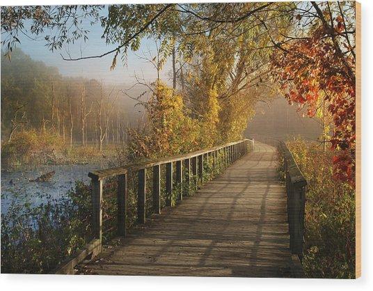 Autumn Emerging Wood Print