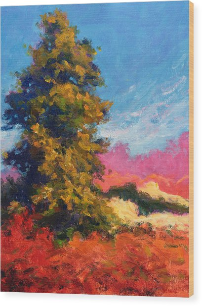 Autumn Evergreen  Wood Print
