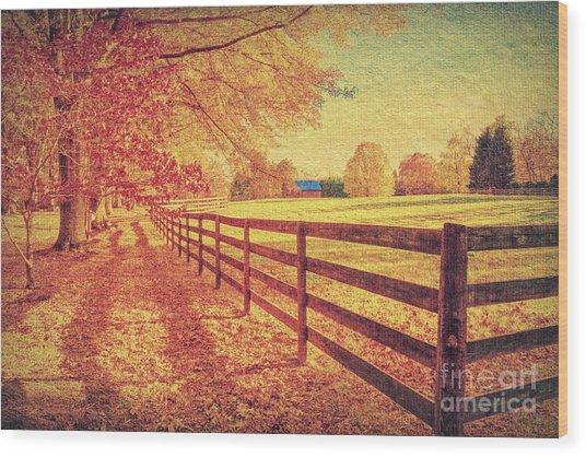 Autumn Fences Wood Print