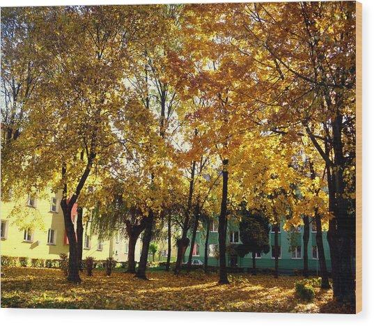 Autumn Festival Of Colors Wood Print