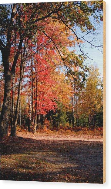 Autumn Flame Wood Print by Jennifer Englehardt