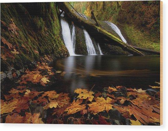 Autumn Flashback Wood Print