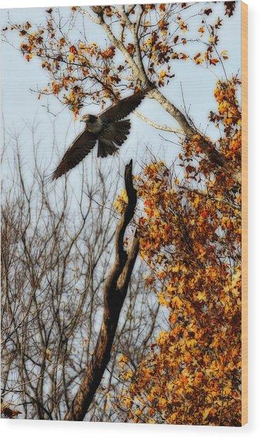 Autumn Flight Wood Print by Alan Skonieczny