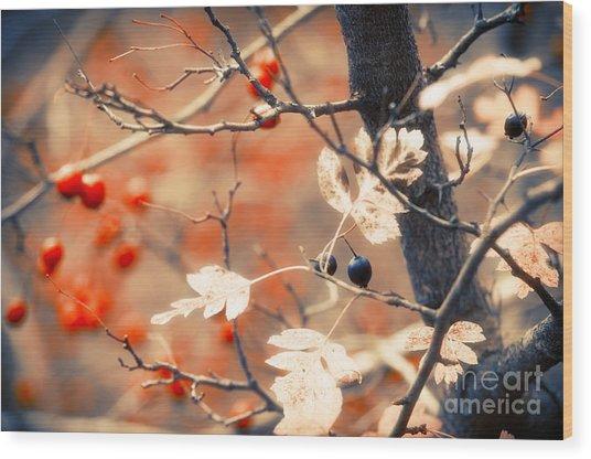 Autumn Forest Wood Print by Konstantin Sevostyanov