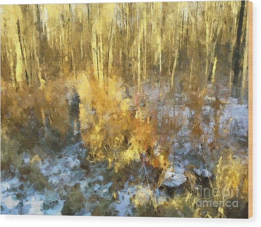 Autumn Gold  Wood Print