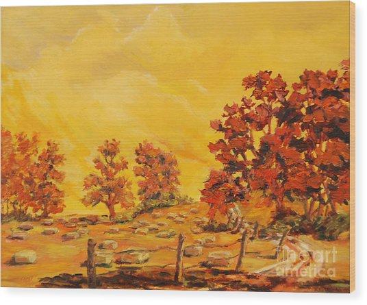 Autumn Haying Wood Print