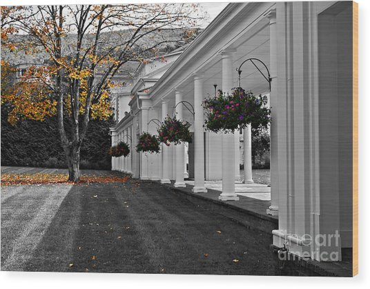 Autumn In Bath County Virginia Wood Print