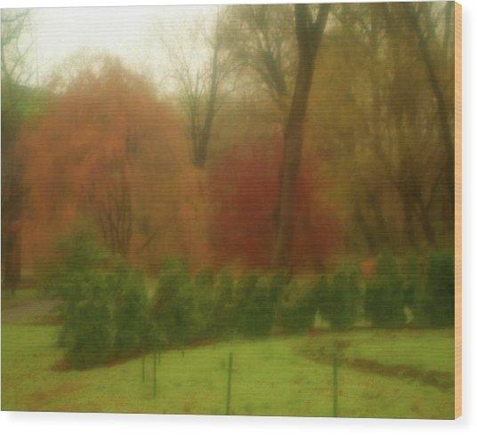 Autumn In Brandywine Park Wood Print