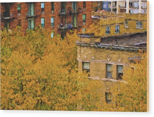 Autumn In Chicago Wood Print