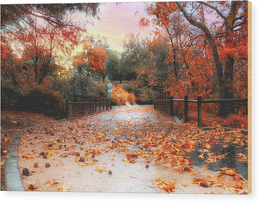 Autumn In Discovery Lake Wood Print