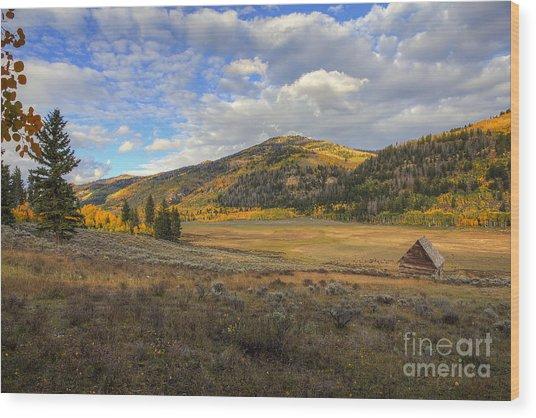 Autumn In Joe's Valley Wood Print