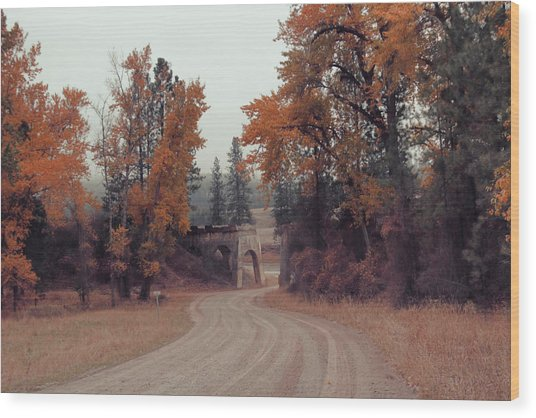 Autumn In Montana Wood Print
