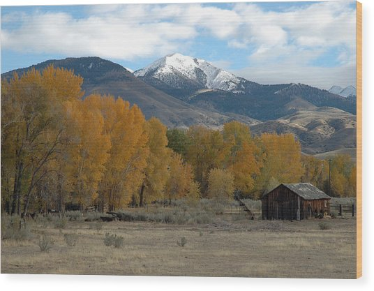 Autumn In Montana's Madison Valley Wood Print