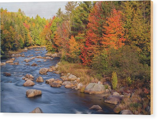 Autumn In New Hampshire Wood Print