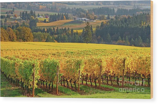 Autumn In Oregon Wine Country Wood Print