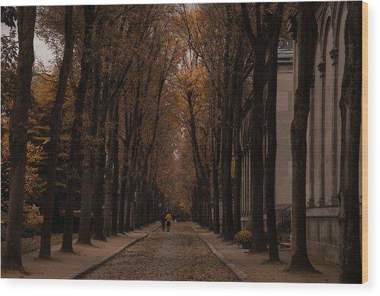 Autumn In Paris 1 Wood Print