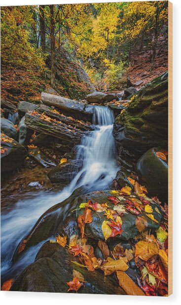 Autumn In The Catskills Wood Print