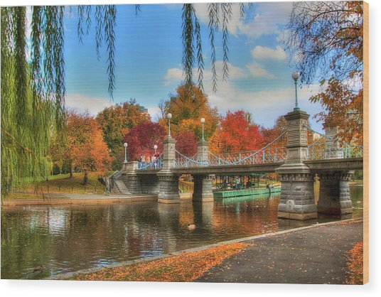 Autumn In The Public Garden - Boston Wood Print