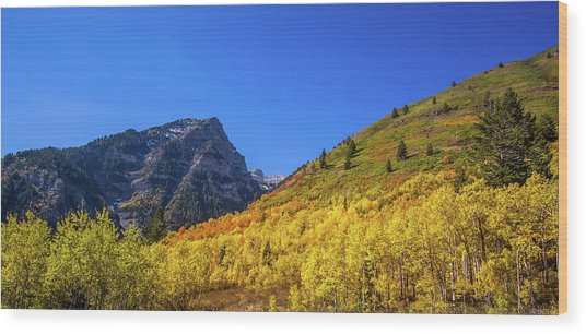 Autumn In The Rockies Wood Print
