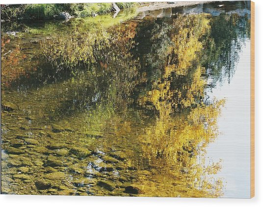 Autumn In The Water Wood Print