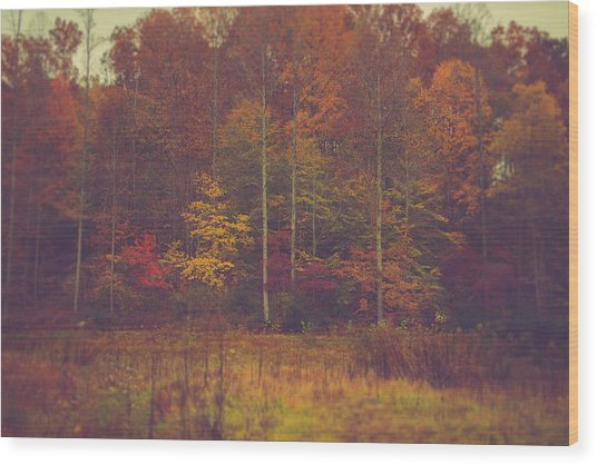 Autumn In West Virginia Wood Print