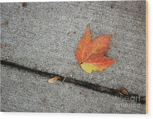 Autumn Leaf Wood Print