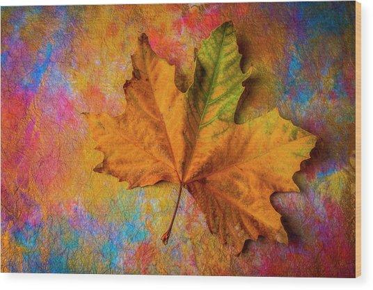 Autumn Leaf Wonderful Colors Wood Print