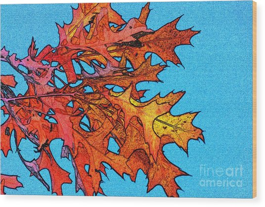 Autumn Leaves 14 Wood Print